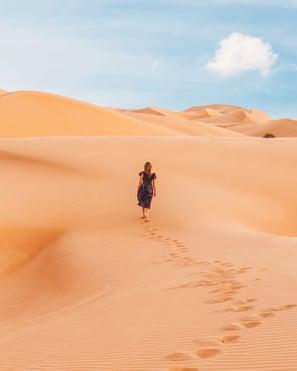 Blog - Sharon Krause - Desert Decisions - image