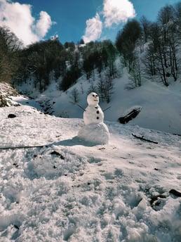 Blog - Sharon Krause - Lenten snowman_image